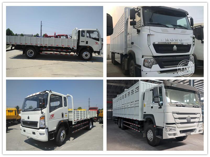 cargo truck 6